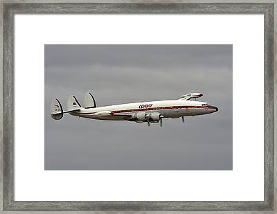 Connie Framed Print by Barry Culling