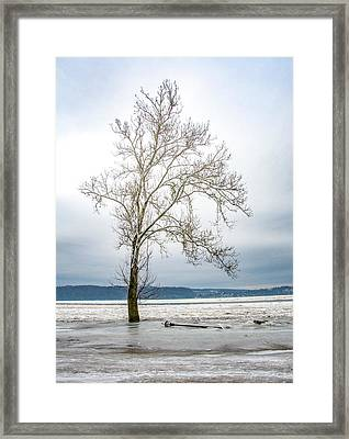 Consequence Framed Print