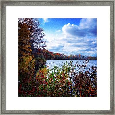 Conservation Park And Pine River In The Fall Framed Print