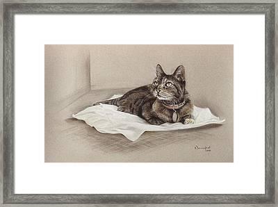 Considering Framed Print by Nanybel Salazar