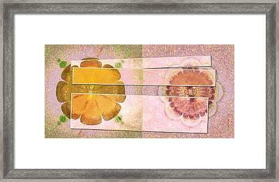 Conspiringly Daydream Flower  Id 16165-154908-50661 Framed Print