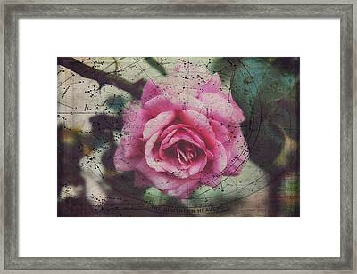 Constellation Rose Framed Print by Toni Hopper