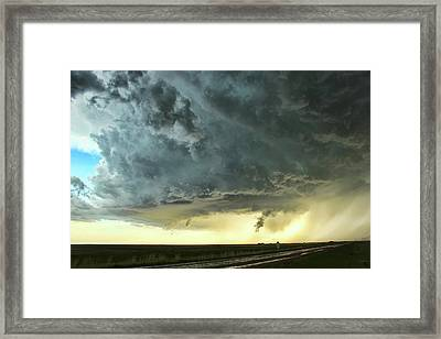 Consul Beast Framed Print by Ryan Crouse