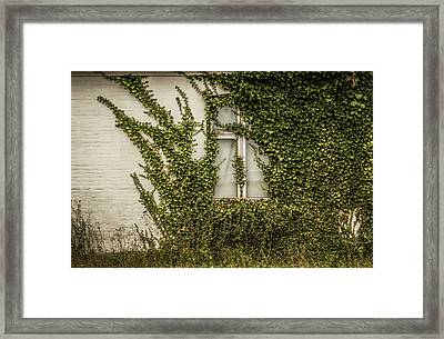 Consumption Framed Print