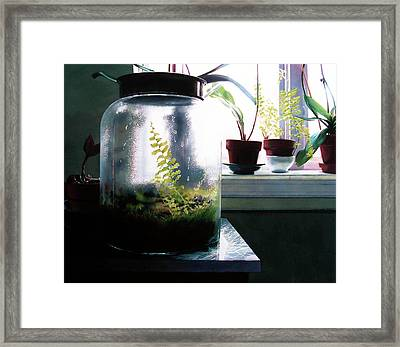 Contained Framed Print by Denny Bond
