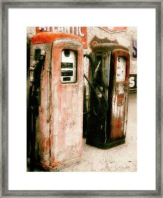 Contains Lead  Framed Print by Steven Digman