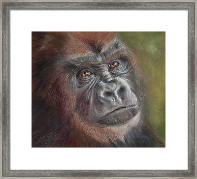 Contemplating Life Framed Print