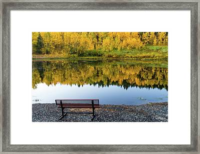 Framed Print featuring the photograph Contemplating The Colors Of A Colorado Autumn by John De Bord