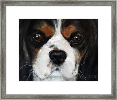 Contemplation Framed Print by Mary Sparrow