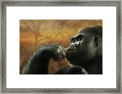 Framed Print featuring the photograph Contemplation by Lori Deiter
