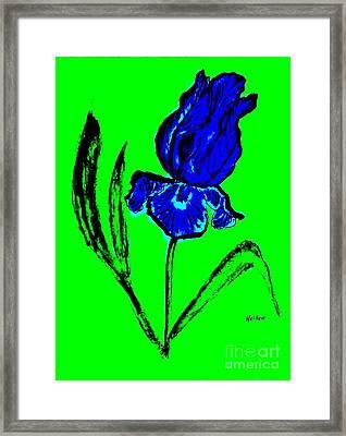 Contemporary Iris Framed Print by Marsha Heiken