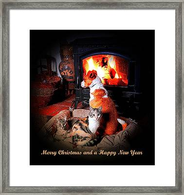 Contentment Christmas Card Framed Print by Dorothy Berry-Lound