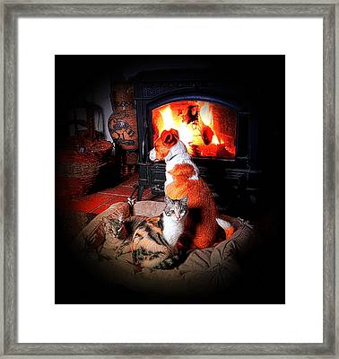 Contentment Framed Print by Dorothy Berry-Lound