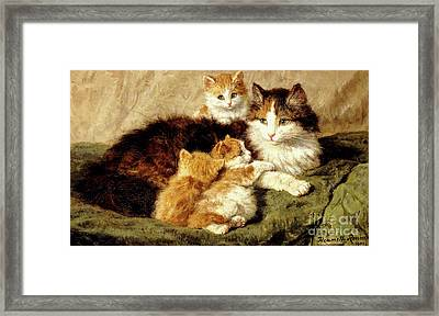 Contentment Framed Print by Henriette Ronner-Knip