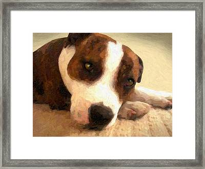 Contentment Framed Print by Michael Tompsett