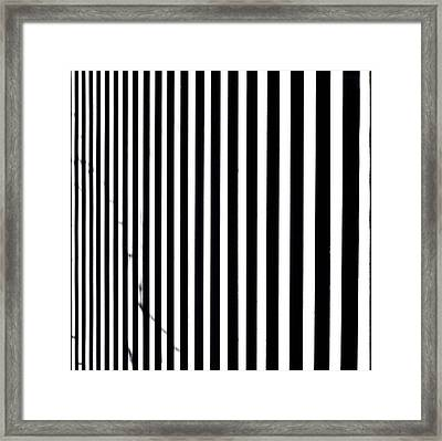 Continuum 5 Framed Print
