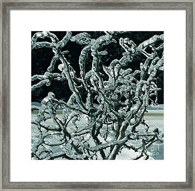 Contorted Framed Print