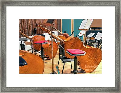 Contra-basses On The Stage During A Break Framed Print by Bratislav Stefanovic