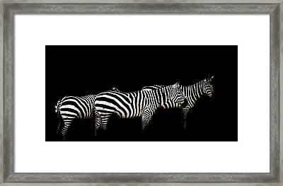 Contrast Framed Print by Paul Neville