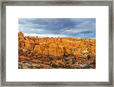Contrasts In Arches National Park Framed Print