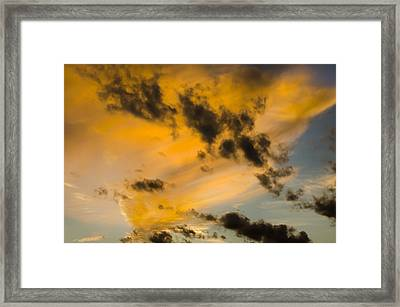 Framed Print featuring the photograph Contrasts by Wanda Krack