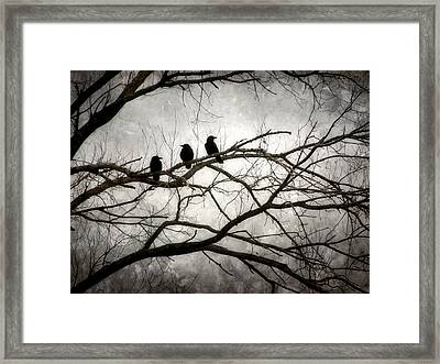 Contrive - By The Light Of The Moon Framed Print