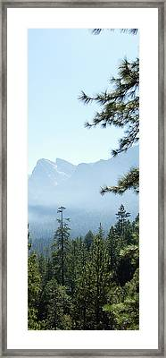 3 Of 4 Controlled Burn Of Yosemite Section Framed Print