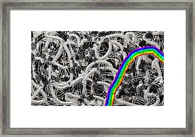 Framed Print featuring the digital art Controversy by Vannetta Ferguson