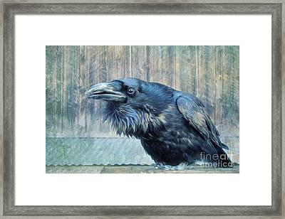 Conversation  Framed Print by Priska Wettstein