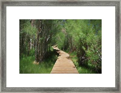 Framed Print featuring the photograph Convict Lake Loop Trail by Donna Kennedy