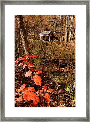 Cook Cabin Framed Print by Alan Lenk