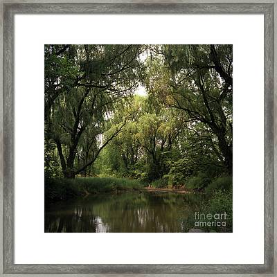Cook County Forest Preserve No 6 Framed Print by Kathy McClure