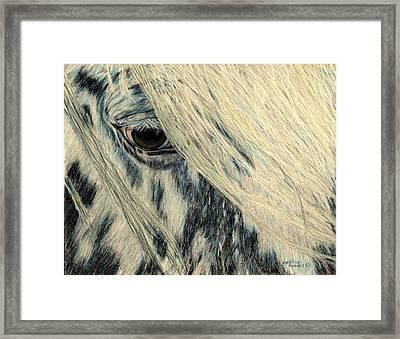 Cookie's Eye Framed Print by Angela Finney