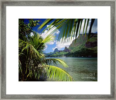 Cooks Bay With Sailboat Framed Print by Ron Dahlquist - Printscapes