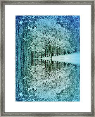 Cool Blue Winter Reflection Framed Print by Aimee L Maher Photography and Art Visit ALMGallerydotcom