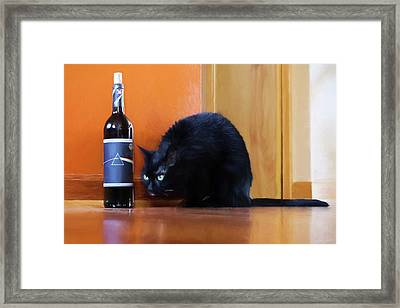 Cool Cat Framed Print by Peter Chilelli