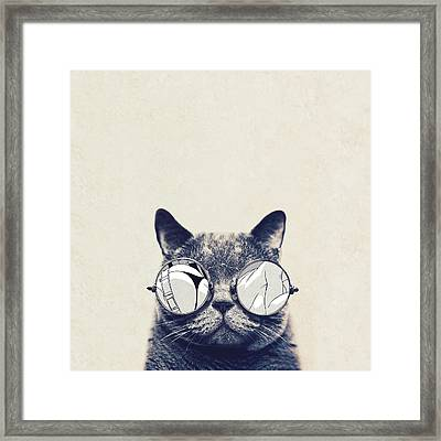 Cool Cat Framed Print by Vitor Costa