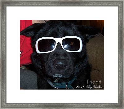 Cool Dude Odie Framed Print