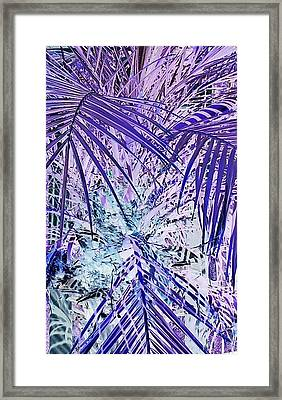 Cool Jungle Vibe Framed Print