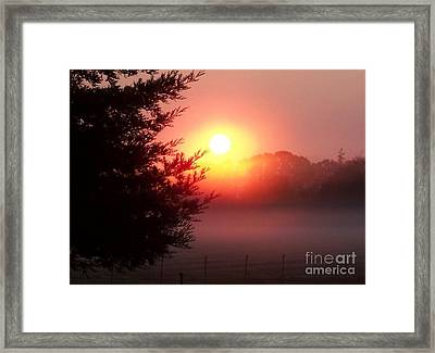Framed Print featuring the photograph Cool Morning by Erica Hanel