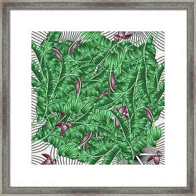 Cool Tropic  Framed Print by Mark Ashkenazi