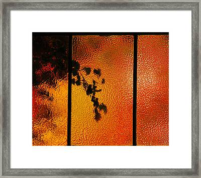 Cool Windows 1 Framed Print by Jean Booth