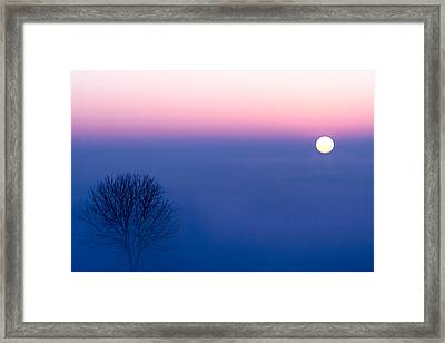 Cool Winter Sun Framed Print