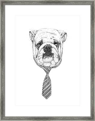 Cooldog Framed Print by Balazs Solti