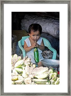 Cooling Drink Framed Print by Jez C Self