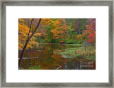 Cooper Mill Trail Framed Print