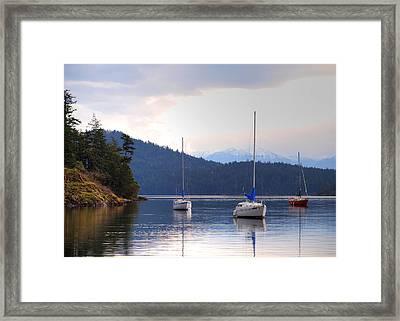 Cooper's Cove 1 Framed Print