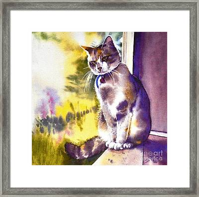 Coops The Cat Framed Print