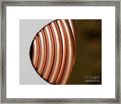 Copper Curves Framed Print