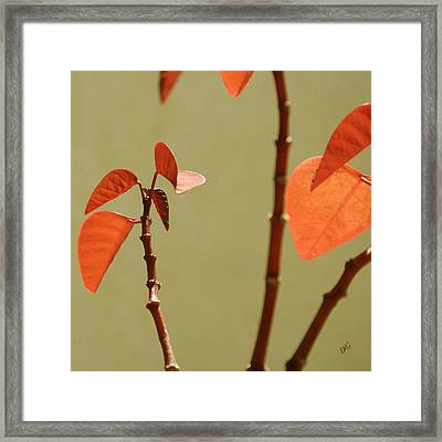 Framed Print featuring the photograph Copper Plant 2 by Ben and Raisa Gertsberg